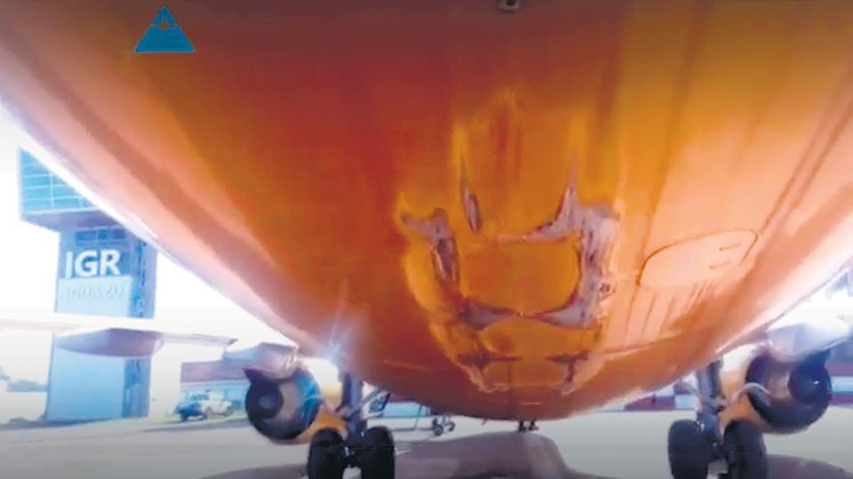 FlyBondi derrapa, pero no despega